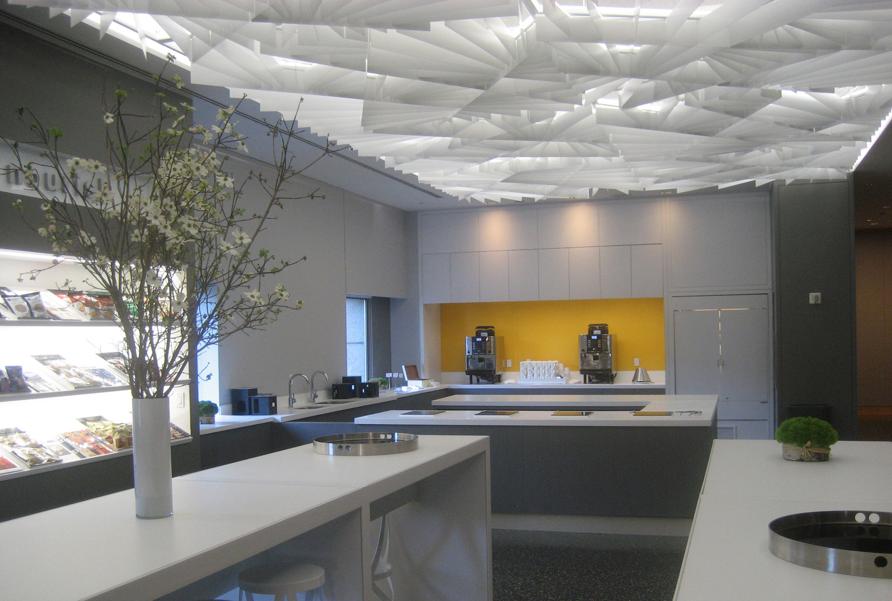 Arktura Atmosphera® Lotus installed in office